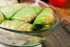 Stuffed cabbage prepared for cooking Royalty Free Stock Photography