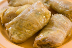 Stuffed cabbage roll,. Food theme. Stuffed cabbage roll Stock Photo