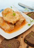 Stuffed Cabbage Roll with Vegetables Stock Photos