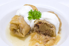 Stuffed cabbage rolls Royalty Free Stock Image