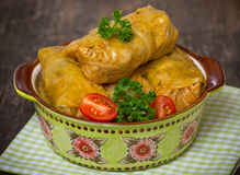 Stuffed cabbage rolls. Close up stock photography