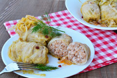 Stuffed cabbage rolls Royalty Free Stock Photography