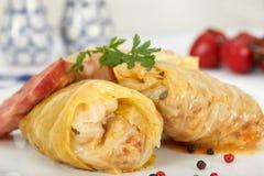 Stuffed cabbage rolls. Homemade Sarma royalty free stock photos