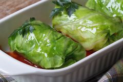Stuffed Cabbage rolls with minced meat, rice and sauce Stock Images