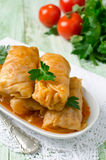 Stuffed cabbage rolls with rice and meat on a white plate Stock Image