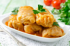 Stuffed cabbage rolls with rice and meat on a white plate Stock Images