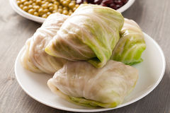 Stuffed cabbage rolls on a wooden table Stock Image