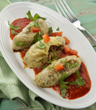 Stuffed Cabbage With Tomato Sauce Stock Photography