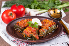 Stuffed cabbage with tomato sauce on a plate. With vegetables Royalty Free Stock Image