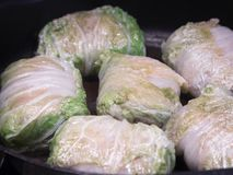 Stuffed cabbage - a traditional Russian dish royalty free stock photography