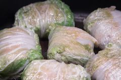 Stuffed cabbage - a traditional Russian dish royalty free stock photo