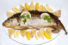 Stuffed Carp Royalty Free Stock Photos