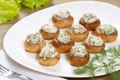 Stuffed champignon Stock Images
