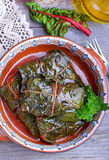 Stuffed chard leaves. In ceramic bowl Stock Images