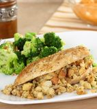 Stuffed Chicken Breast Stock Images