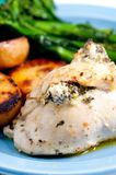 stuffed chicken breast with cheese and spinach Stock Images