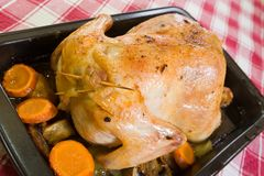Stuffed chicken in roasting pan Royalty Free Stock Images