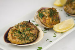 Stuffed clams appetizer. With lemon garnish Royalty Free Stock Image
