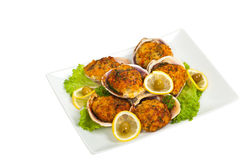 Stuffed Clams. Baked Stuffed Clams. Selective focus royalty free stock images