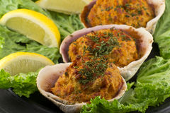 Stuffed Clams Royalty Free Stock Photography
