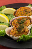 Stuffed Clams Royalty Free Stock Photos