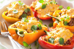 Stuffed colorful peppers with meat cheese vegetables Royalty Free Stock Image