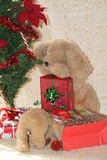 Stuffed dog and the candy cane. Royalty Free Stock Images