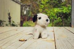 Stuffed dog Royalty Free Stock Photo