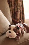 Stuffed dog toy Royalty Free Stock Photos