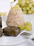Stuffed Dolmades with Rice Royalty Free Stock Photos