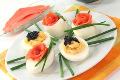 Stuffed eggs Stock Images