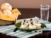 Stuffed Eggs with pate Royalty Free Stock Photos