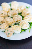 Stuffed eggs on rocket leaves Stock Images