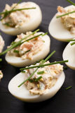 Stuffed eggs with salmon Stock Images
