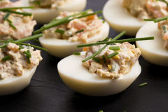 Stuffed eggs with salmon Royalty Free Stock Images