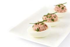 Stuffed eggs with tuna isolated. On white background Royalty Free Stock Images