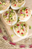 Stuffed eggs with tuna Stock Image