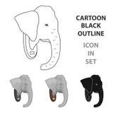 Stuffed elephant head.African safari single icon in cartoon style vector symbol stock illustration web. Royalty Free Stock Photos