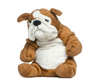 Stuffed English bulldog toy Royalty Free Stock Image