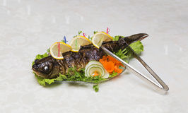Stuffed fish Royalty Free Stock Images