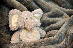 Stuffed fluffy animal Royalty Free Stock Image