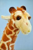 Stuffed giraffe Royalty Free Stock Photography