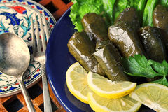 Free Stuffed Grape Leaves Stock Photo - 5469980