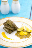 Stuffed Grape Leaves Dish Royalty Free Stock Photo