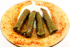 Stuffed Grape Leaves, Dolma Stock Image