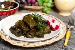 Stuffed Grape Leaves. Dolma or Stuffed Grape Leaves, Azerbaijan, Turkish and Greek cuisine Stock Images
