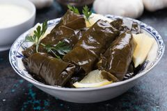 Stuffed grape leaves. Filled with rice or meat stuffing stock images