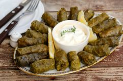 Greek stuffed grape leaves Stock Photography