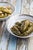 Stuffed Grape Leaves. With hummos and beans salad Stock Images