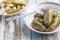 Stuffed Grape Leaves. With hummos and beans salad Stock Photography